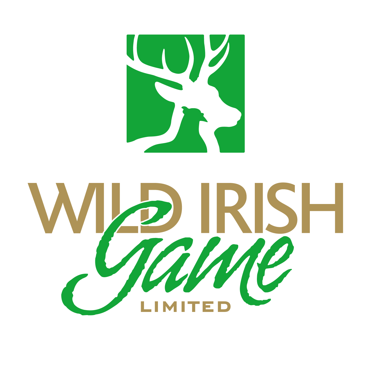 Wild Irish Game
